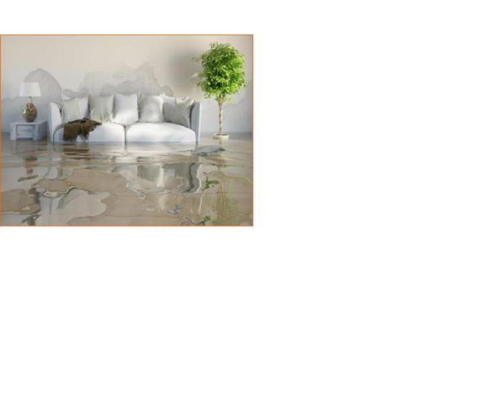 Water Damage Dos & Don'ts when Faced with a Water Damage in Pettis & Johnson Counties