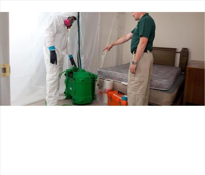 Mold Remediation Managing Mold in Sedalia & Warrensburg