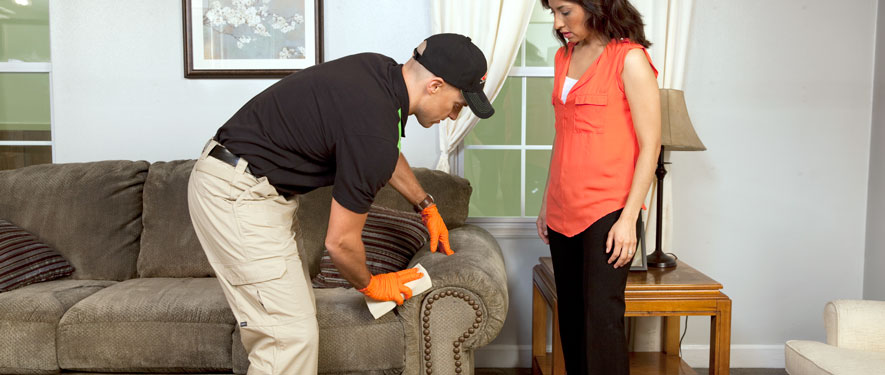 Sedalia, MO carpet upholstery cleaning